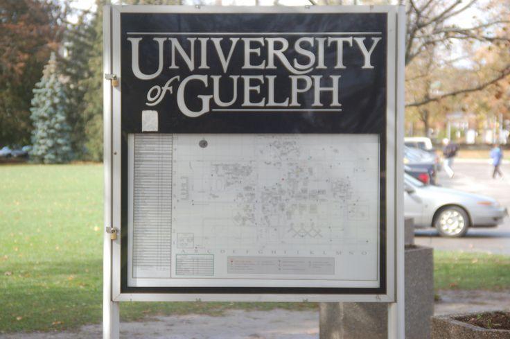 ontario college application services guelph