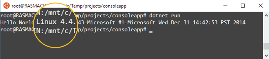 example console application c get