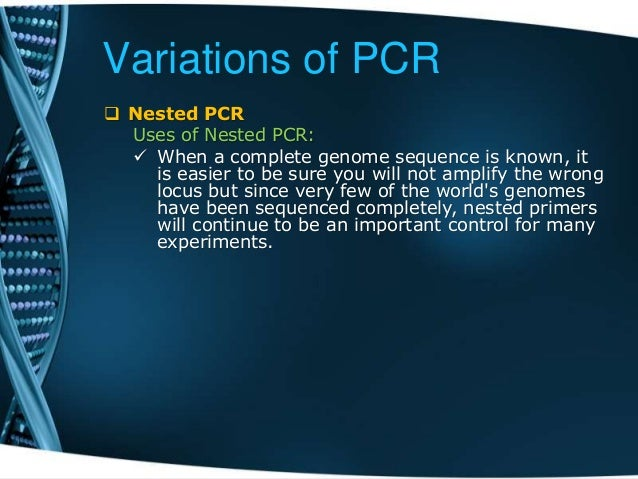 pcr methods and applications pdf