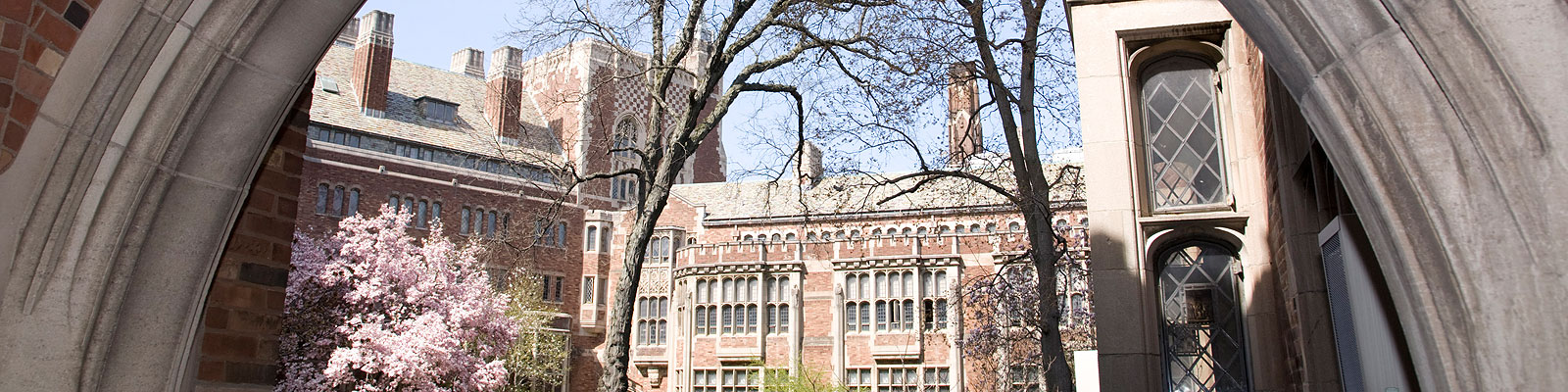 yale graduate school application deadline