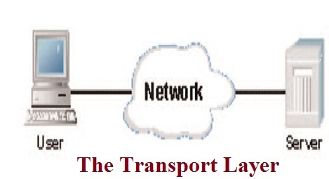 network layer transport and internet layer application layer