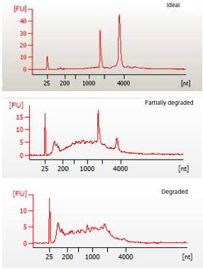 agilent noise figure measurement application note