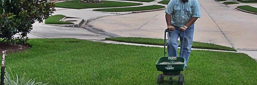 best lawn fertilizer for fall application