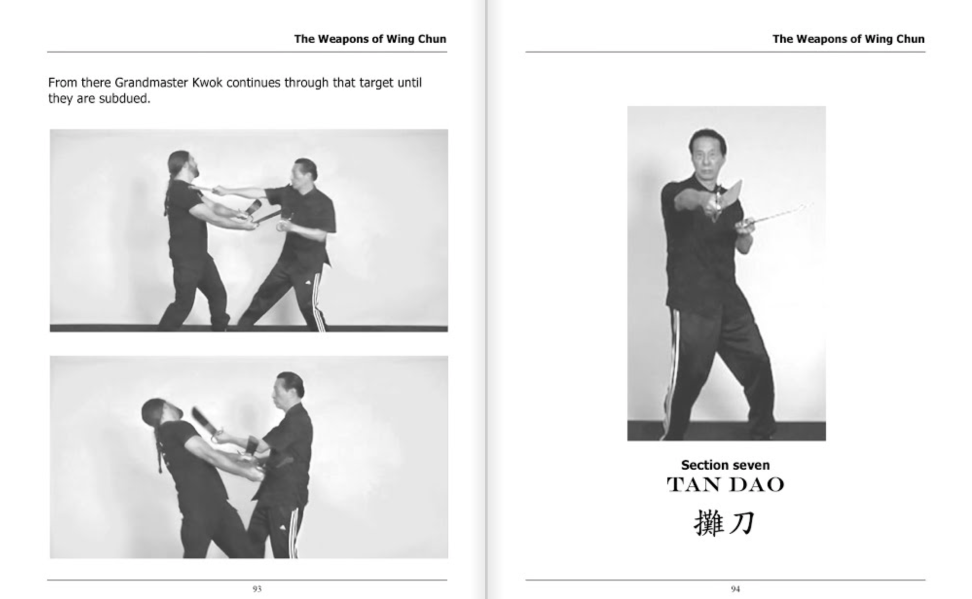 wing chun forms and applications