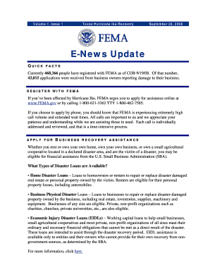 fema application for business owners